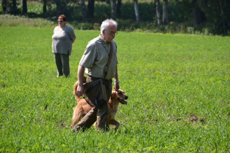 11_der_walk_up