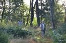 13 Im Wald zur Suche